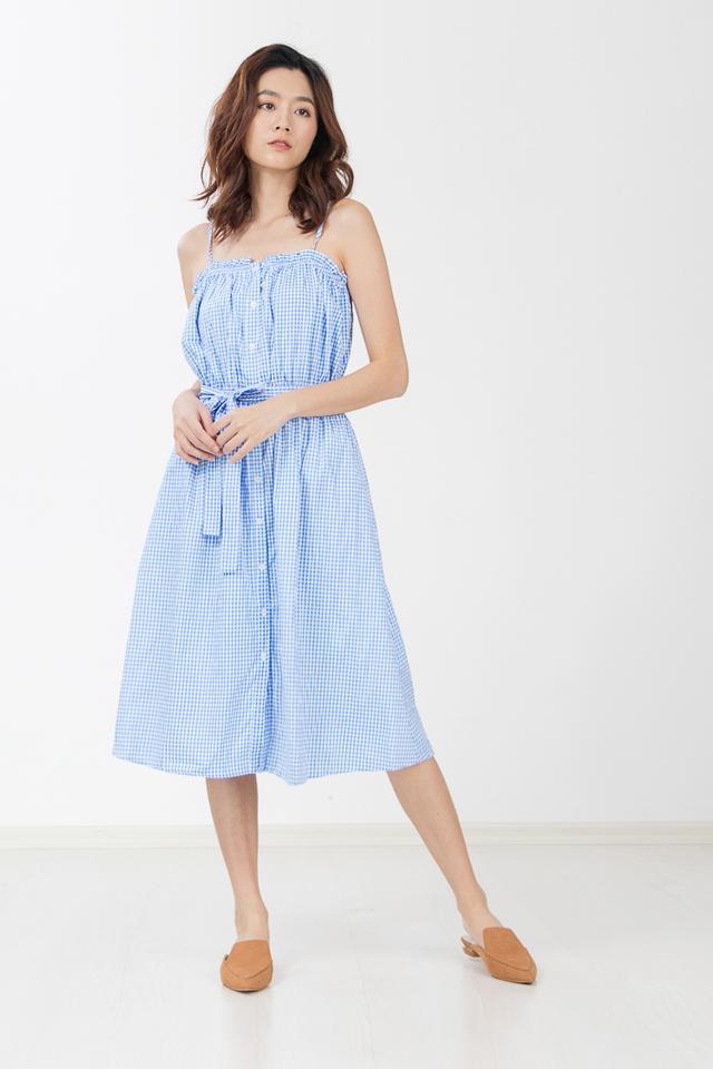 Loewe Gingham Midi Dress in Blue
