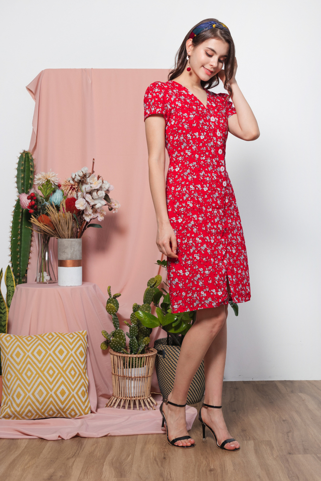 Fennie Printed Floral Dress in Red