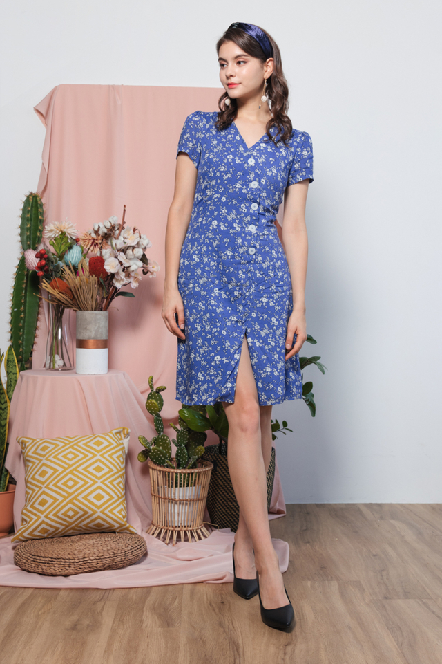 Fennie Printed Floral Dress in Blue