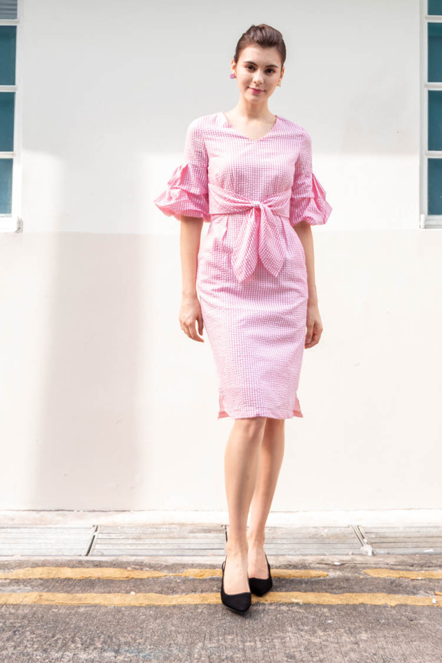 Abarrane Gingham Dress in Pink